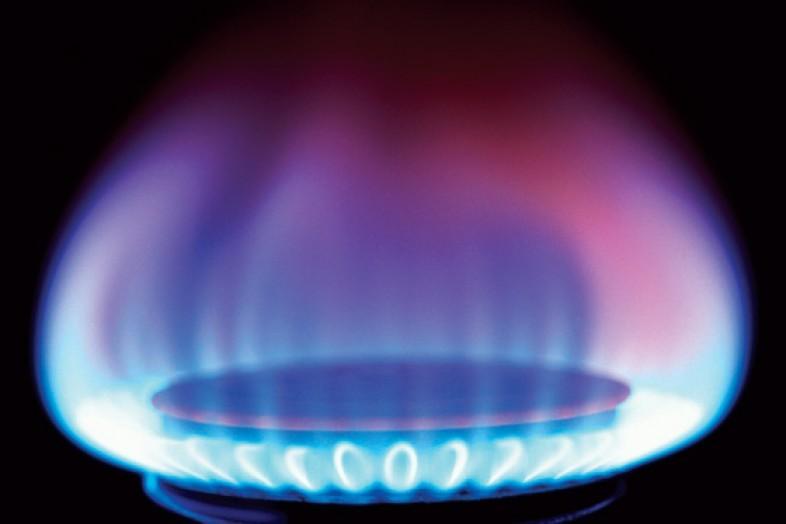 Природные газы
